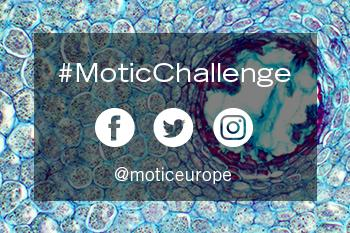New Motic Challenge