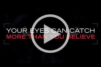 Panthera: Unleash your potentials