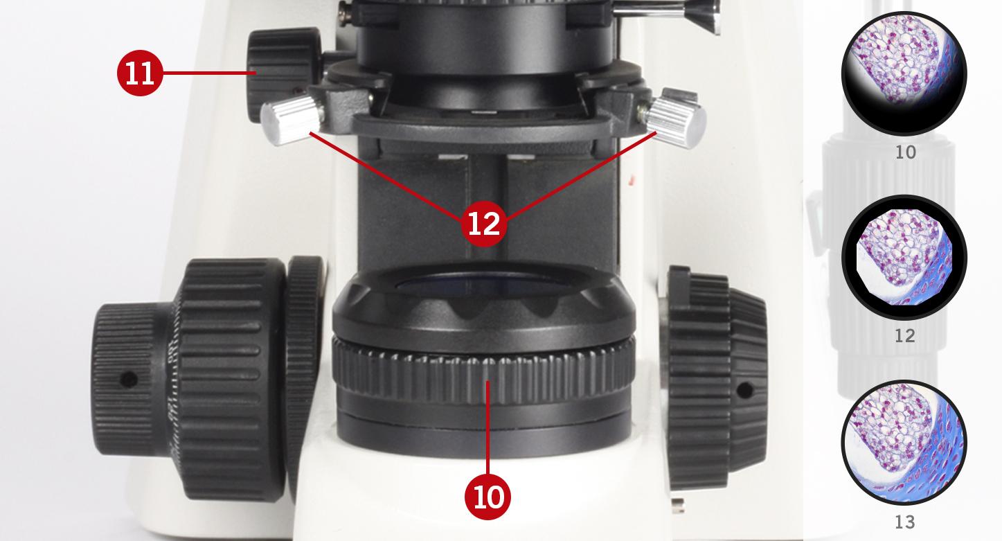 microscope setup