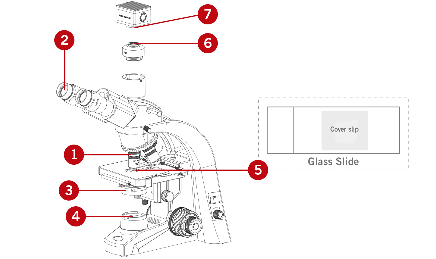 safety recommendations - microscope drawing