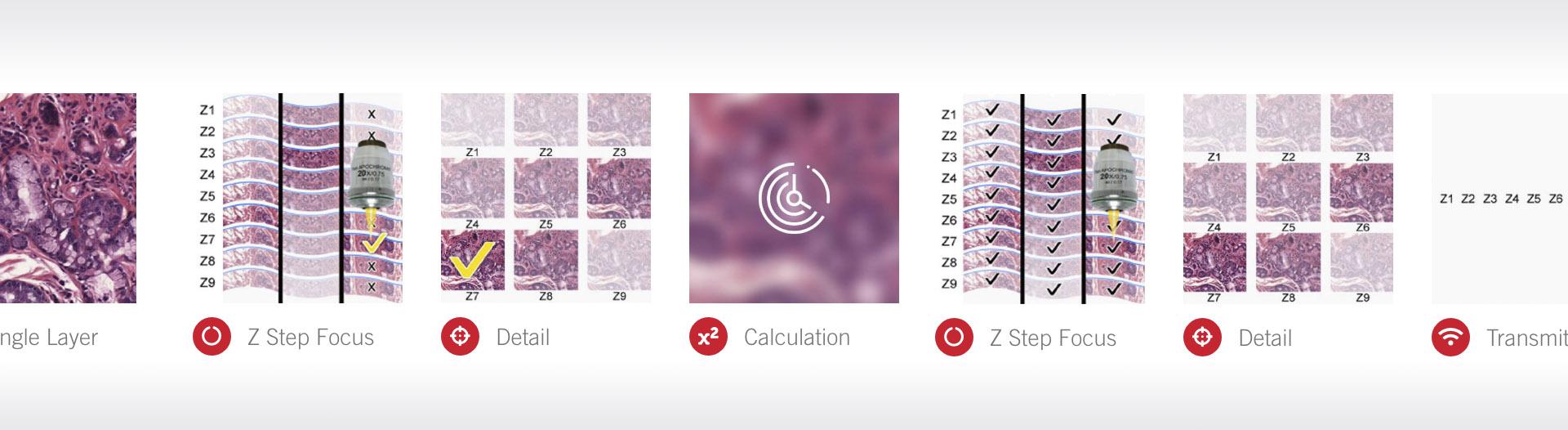 MoticEasyScan scanning modes